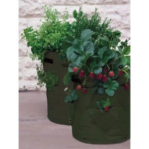 pflanzsack f r erdbeeren und kr uter 2er pack gr n als. Black Bedroom Furniture Sets. Home Design Ideas