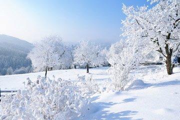 Geschenke Fur Den Winter